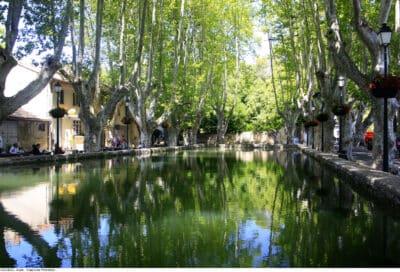 Bassin de l'étang