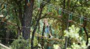 Parc accrobranche Forest Sensation