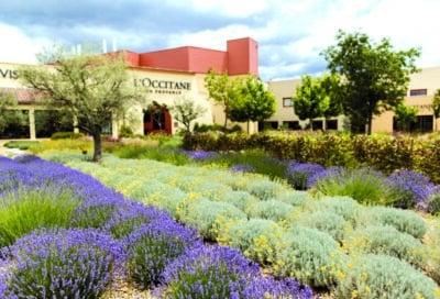 Visite Jardin L'Occitane