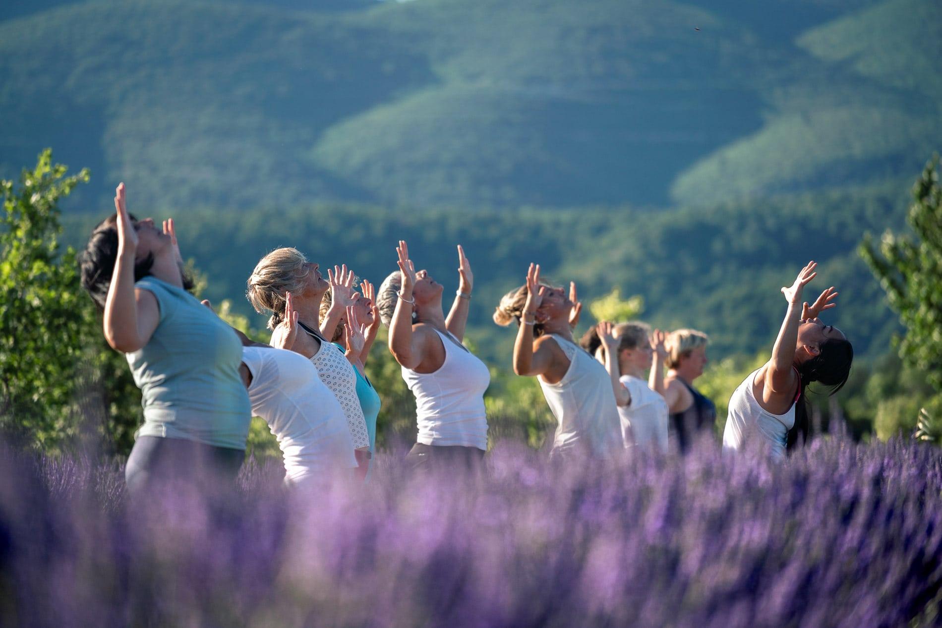 Airfit Provence - yoga dans les lavandes