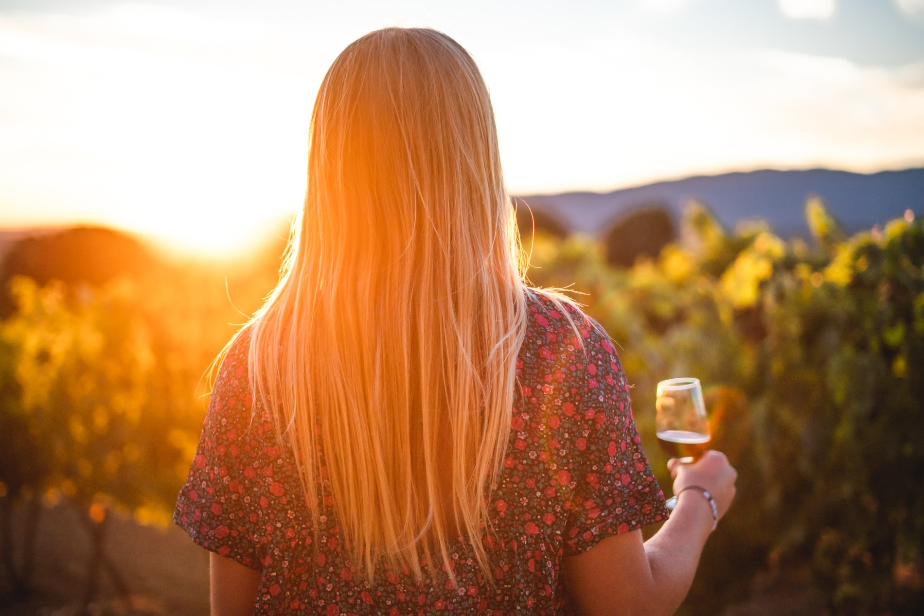 Sunsets Vignerons - Apero concerts