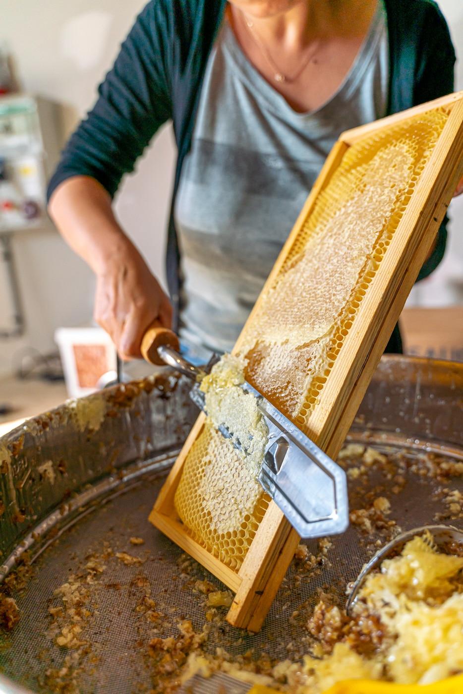 miel-recolte-des-professionnels